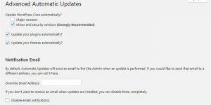 Aktiver automatiske opdateringer i WordPress