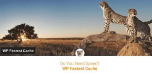 Bedste WordPress Cache Plugin